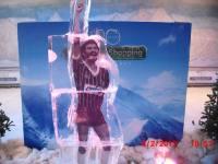 Arte em Gelo para Eventos