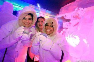 Exposição de Bar de Gelo